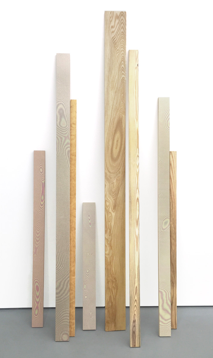 Newton Sticks  Digital C-Prints Mounted on Plexi and Wood Size is Variable 2015