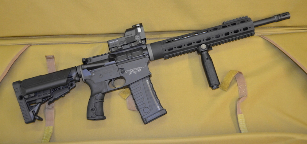 The FCW 15 Rifle