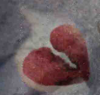 Heart Break & Other Things