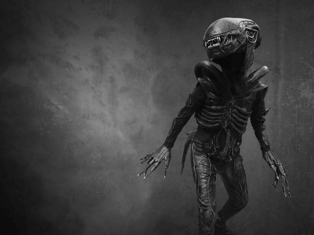 THE ALIEN | COSPLAY BY | Naomi