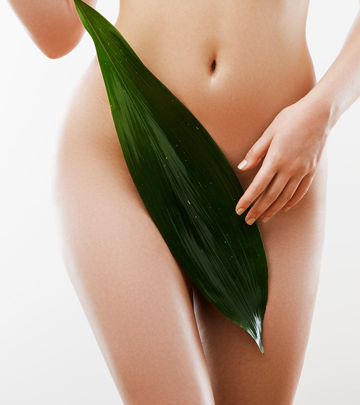 body brazilian wax san antonio waxing facials skincare brows lashes bikini beauty salon