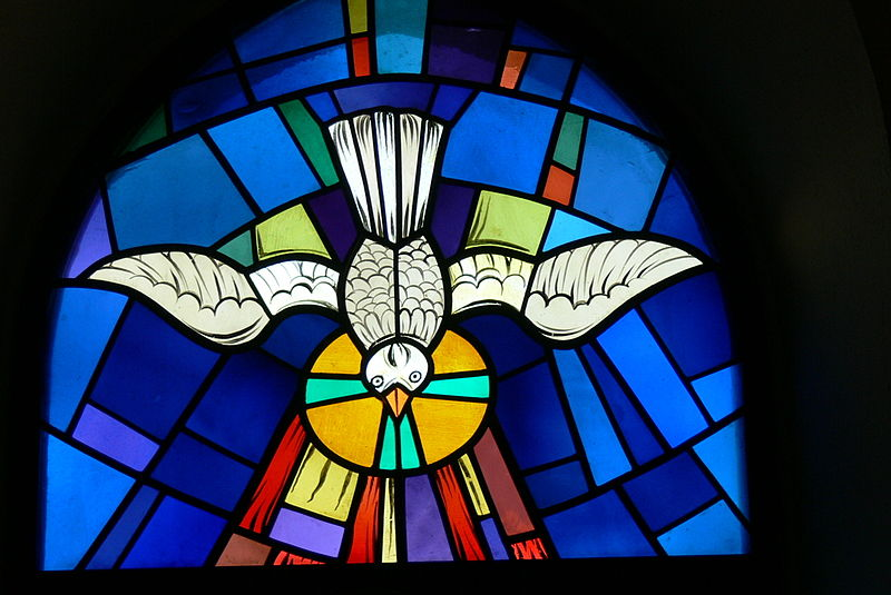 stained glass holy spirt dove.jpg