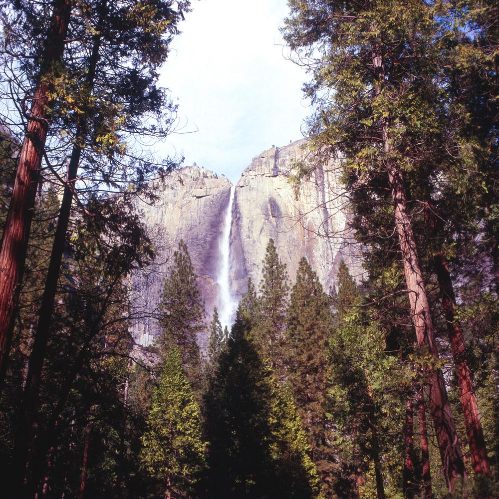 Yosemite Astia 4-1.jpg