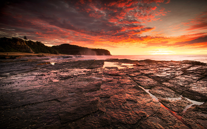 Turimetta rock shelf