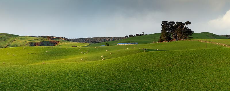 Farm Pano