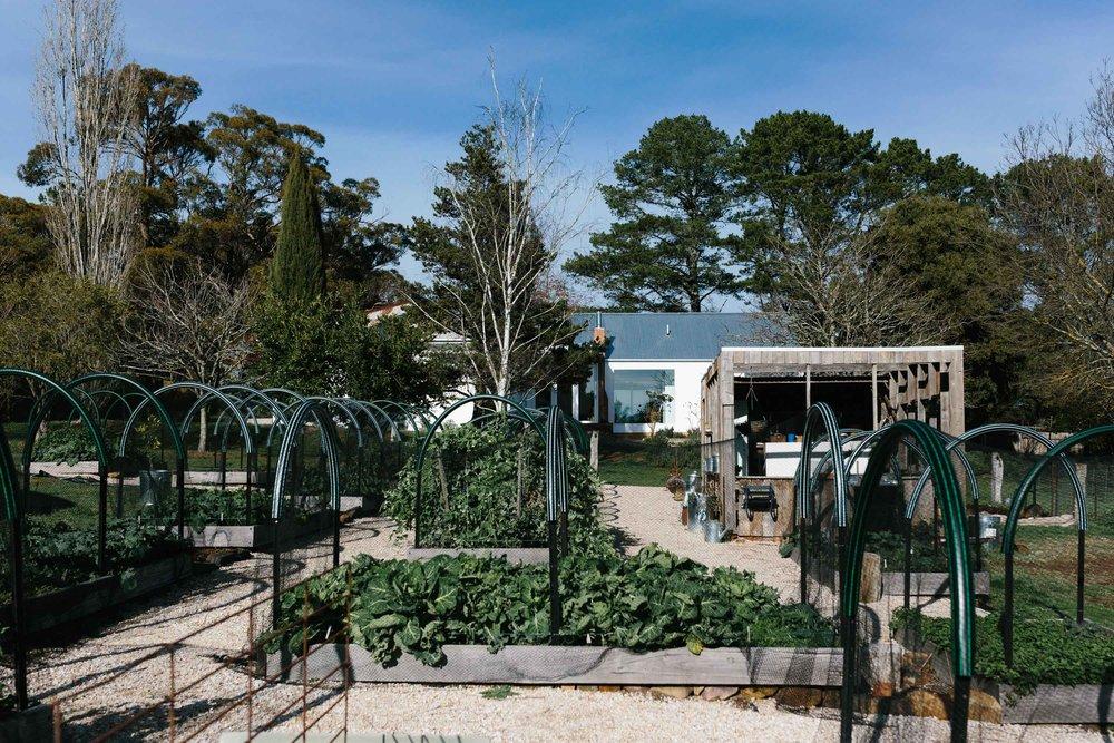 gardenview.JPG