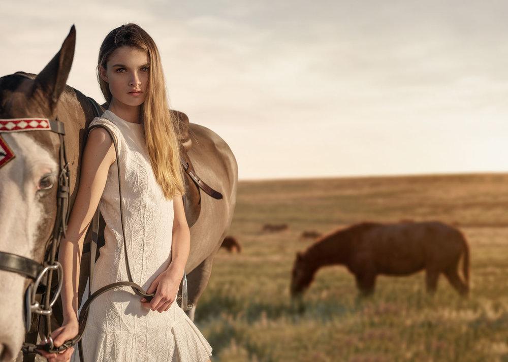 Kyra-Horse-Field.jpg