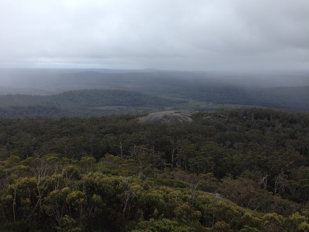View from Mt Frankland, Munda Biddi Trail, north of Walpole