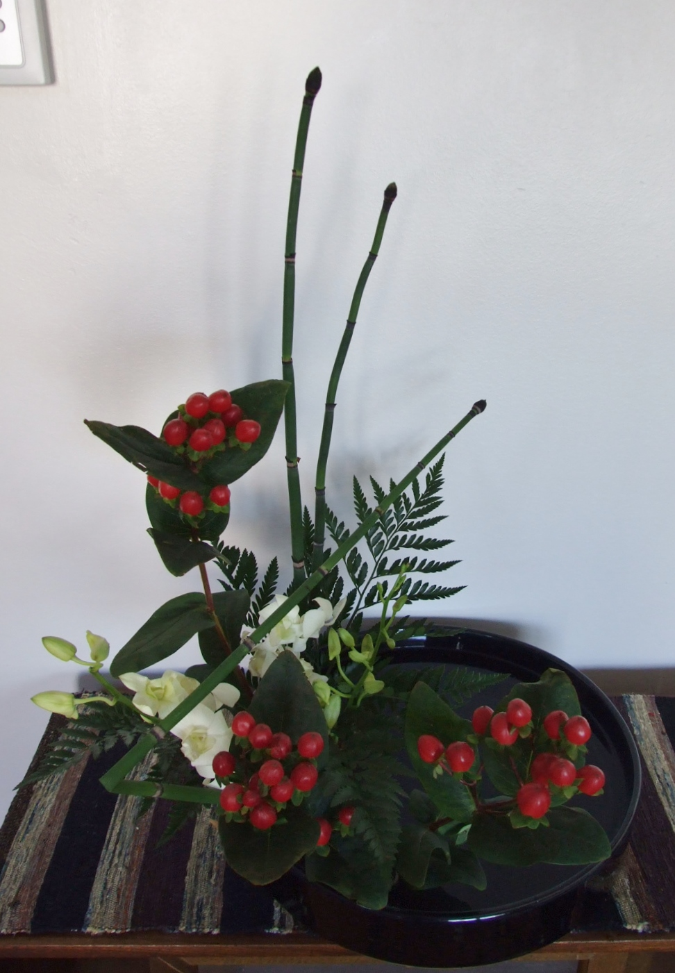 Horse tails, orchids, hypericum berry, razor fern.