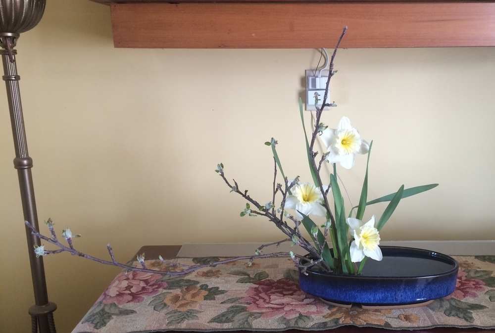 Apple Branches and Daffodils
