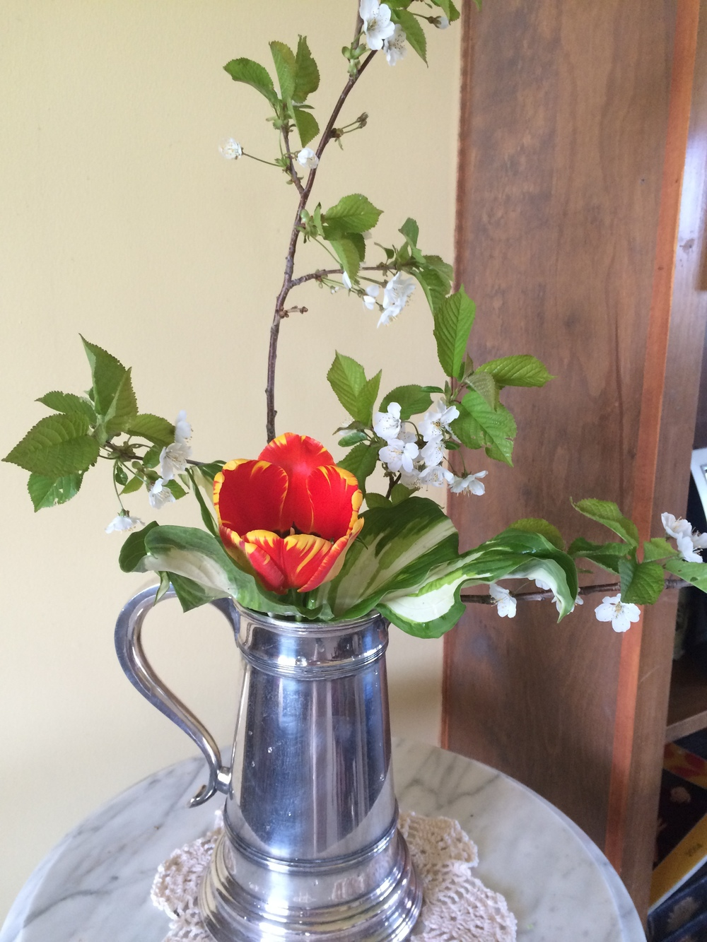 Cherry branch, tulip and hosta