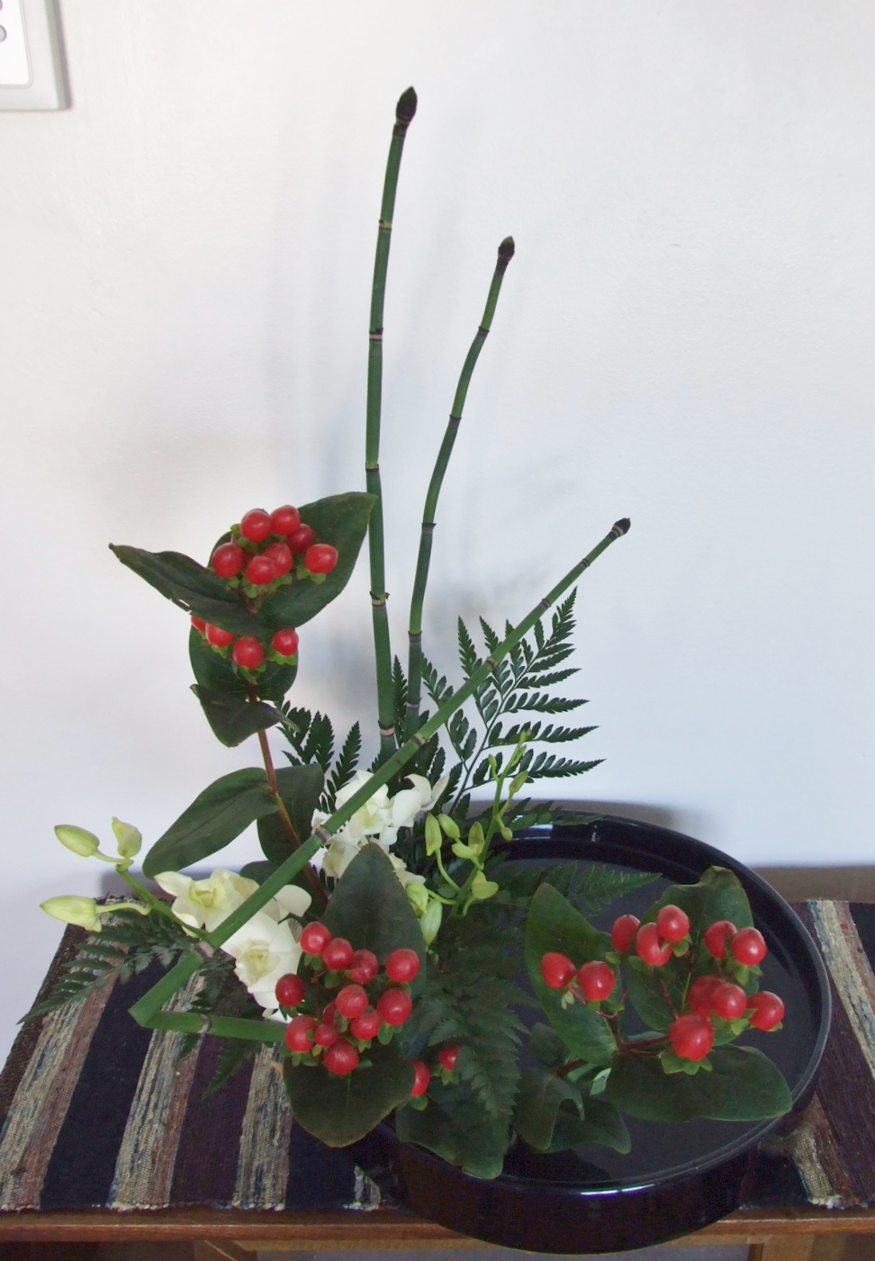 2.14.2015 Hypericum Berry, Horse Tail, Orchid, Fern