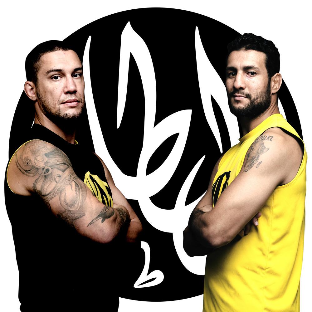 Ray Elbe VS Mehdi Baghdad MMA