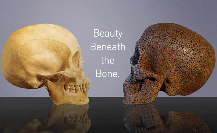 Beauty-Beneath-The-Bone
