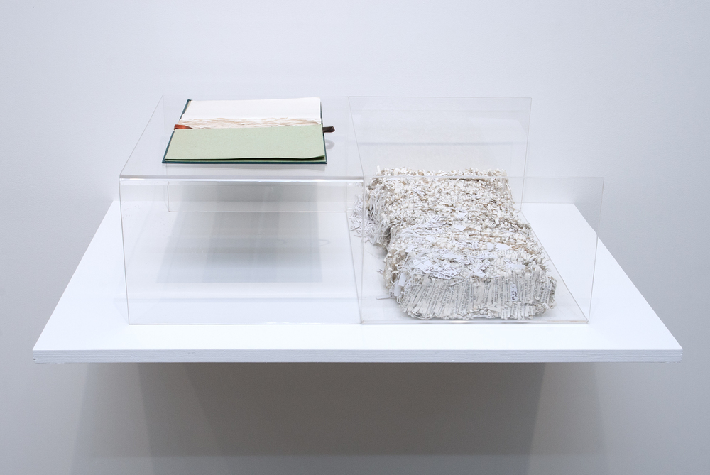 Ulysses , 2010. Shredded pages of book, thread, tags, book cover, 8 x 17 x 24 inches. Book: Pollan, Michael.  The Botany of Desire