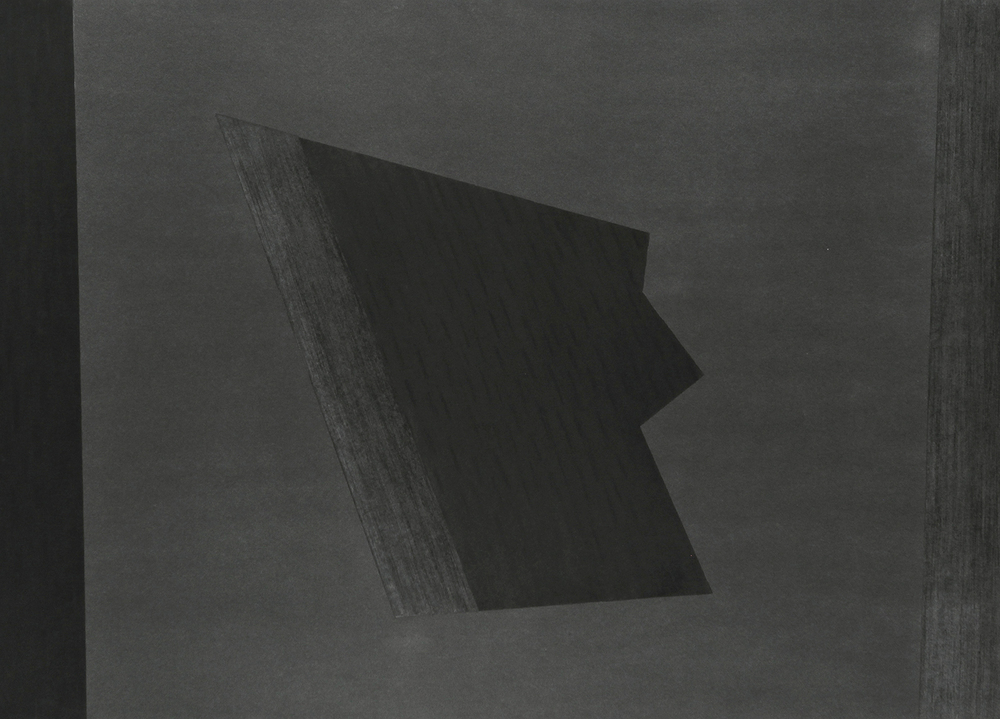 "Divergent Harmonies No. 3 , 2015, charcoal on Stonehenge, 44"" x 56"""