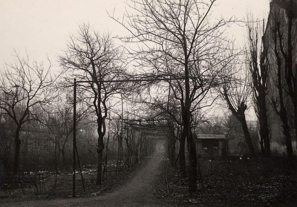 Una antica foto della Vigna, scattata dal grande architetto Luca Beltrami