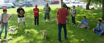 Escuela de cachorros: educando a partir de los 3 meses. Curso destinado a socializar y educar a cachorros, enseñando a sus propietarios cómo mejorar el vínculo con ellos de forma lúdica y evitar futuros problemas de conducta.