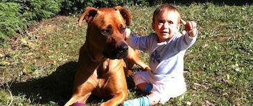 Charlas educativas para niños y adultos. Para los más pequeños, el objetivo es educar a las nuevas generaciones en el respeto y la responsabilidad hacia el perro. Para adultos, la intención es tratar todo lo relacionado con la conducta canina.