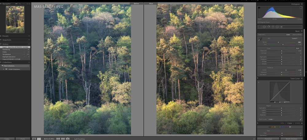 Lightoom CC control panel - the unprocessed file on the left - the image on the right is beginning to be worked on.