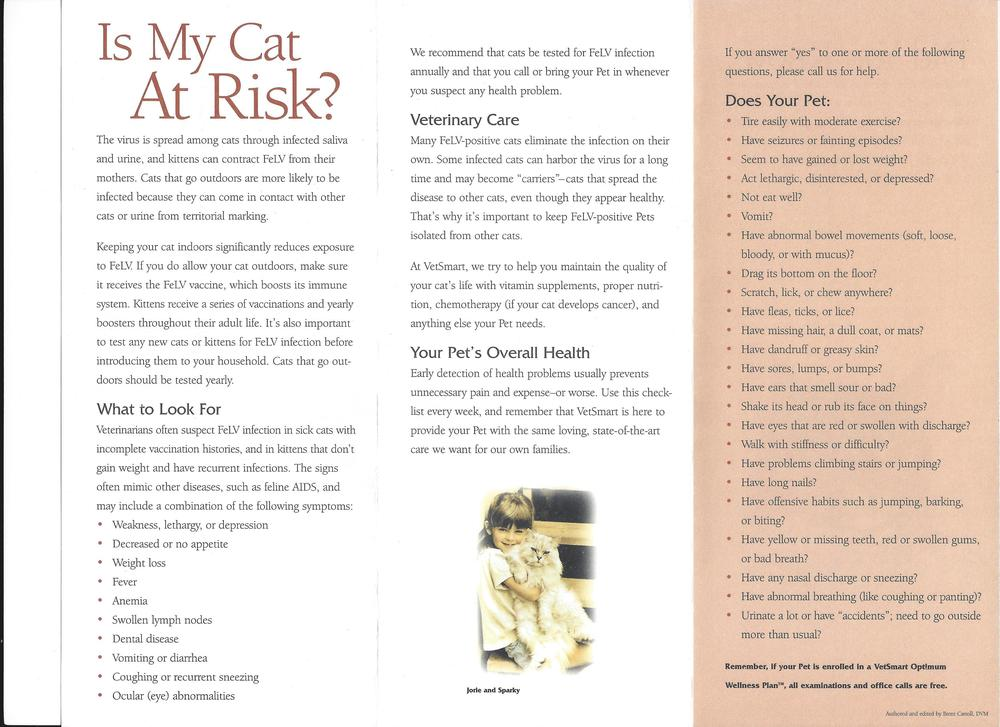 Is My Cat At Risk?