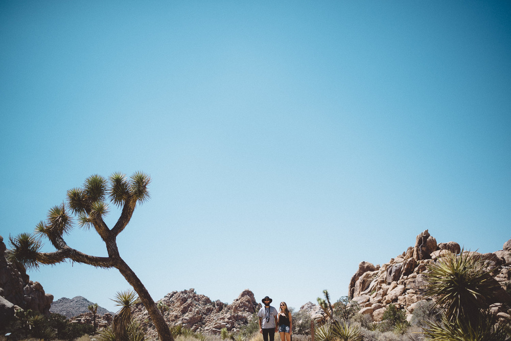 lex_mike_joshua_tree_photography_5293.jpg