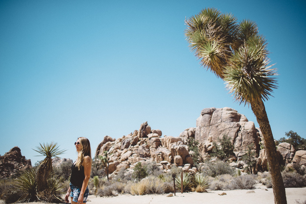 lex_mike_joshua_tree_photography_5296.jpg