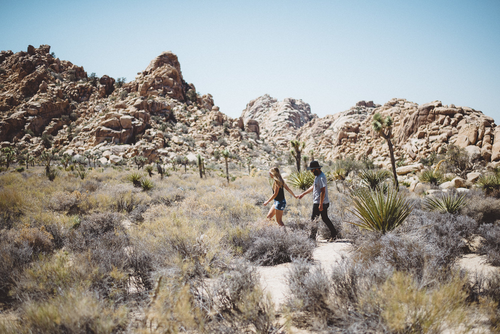 lex_mike_joshua_tree_photography_5324.jpg