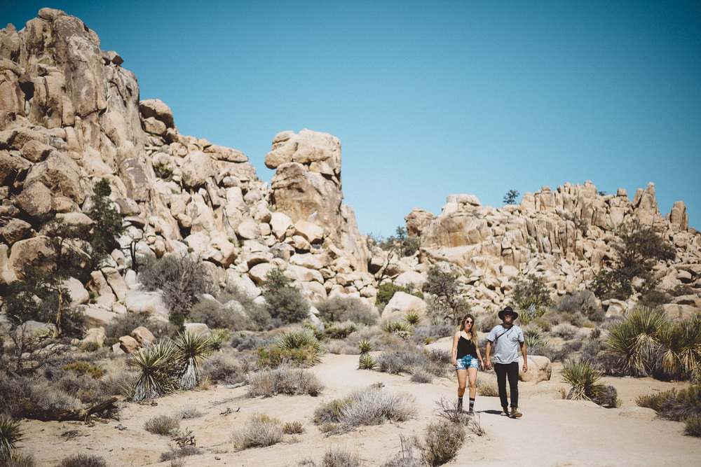 lex_mike_joshua_tree_photography_5497.jpg