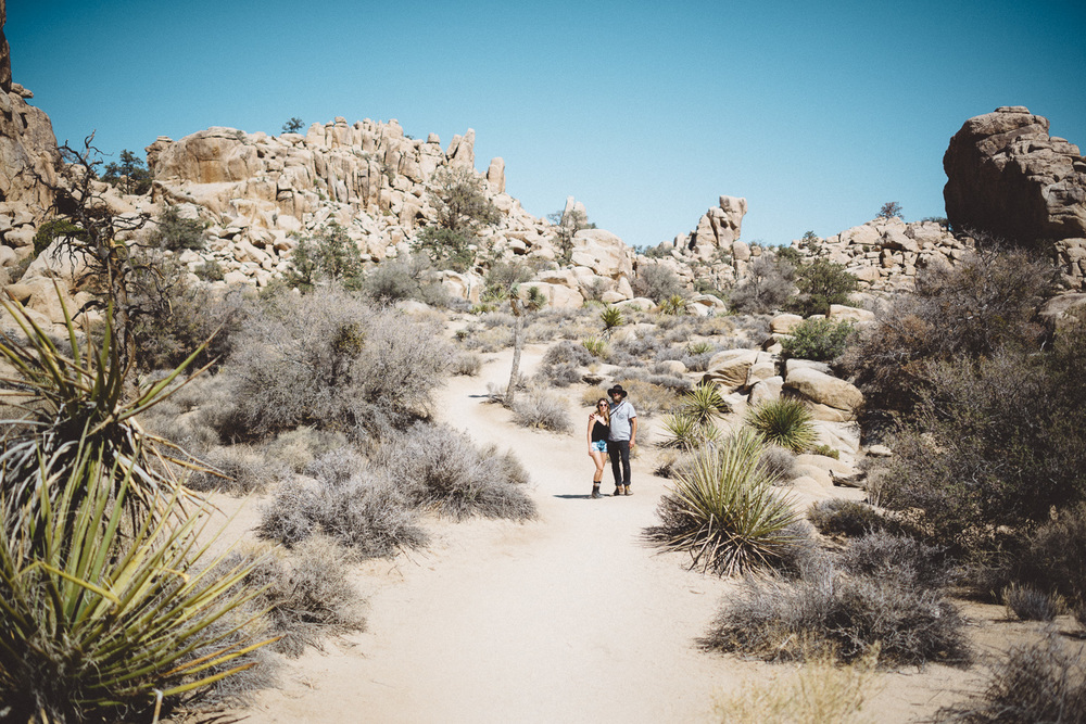 lex_mike_joshua_tree_photography_5505.jpg