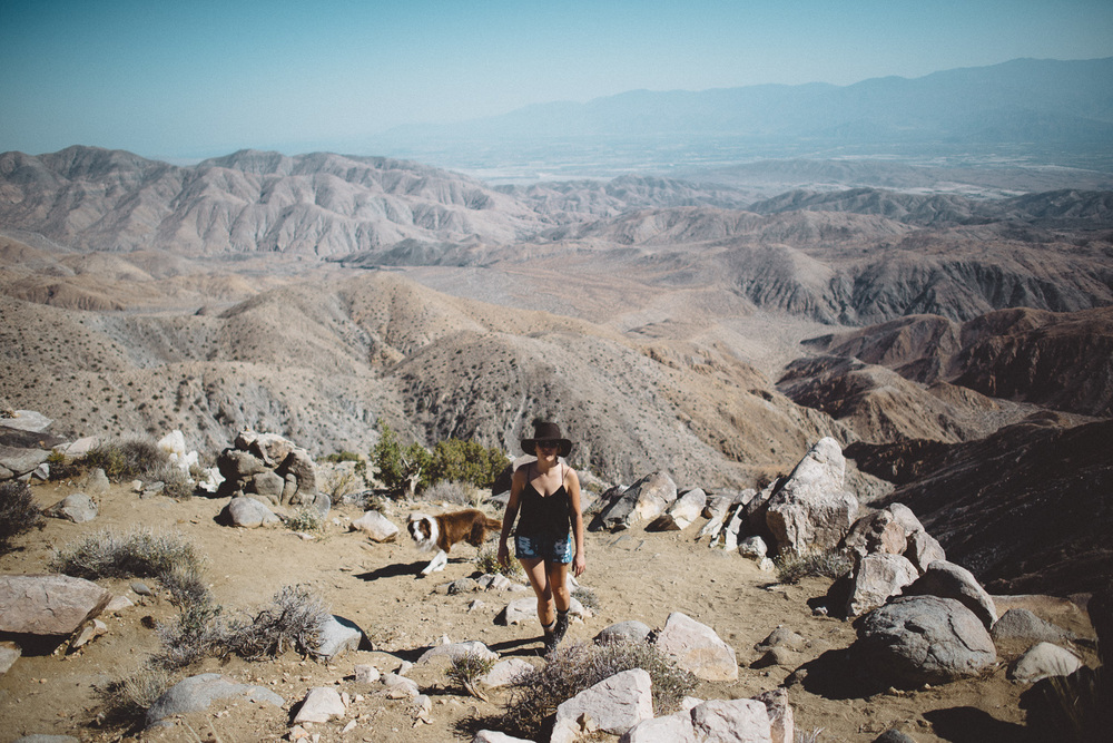lex_mike_joshua_tree_photography_5549.jpg