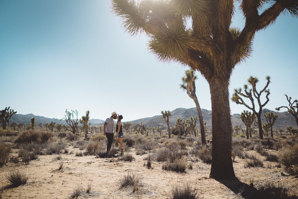 lex_mike_joshua_tree_photography_5604.jpg