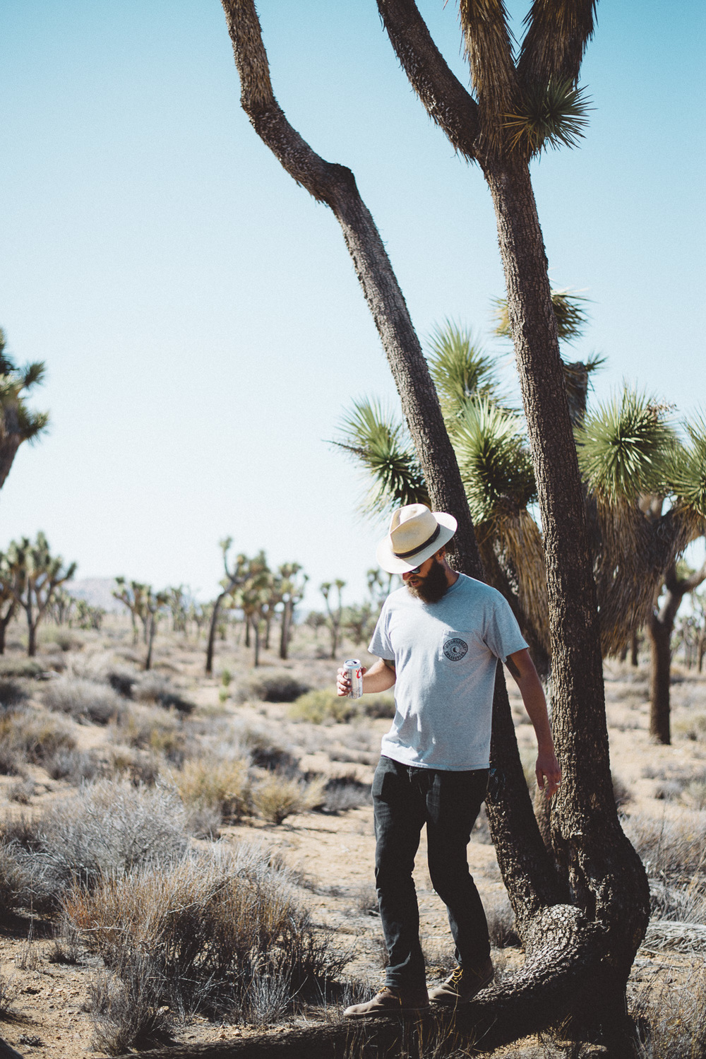 lex_mike_joshua_tree_photography_5639.jpg