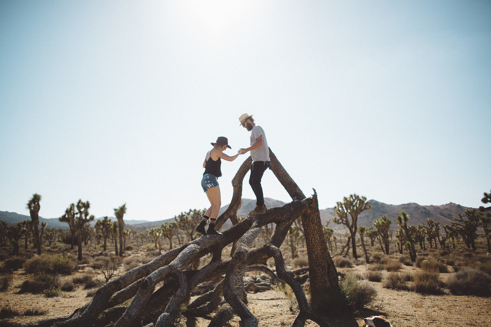 lex_mike_joshua_tree_photography_5674.jpg