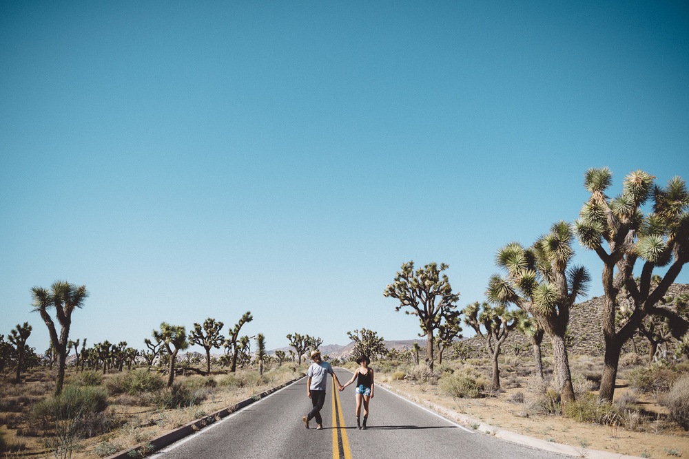 lex_mike_joshua_tree_photography_5704.jpg
