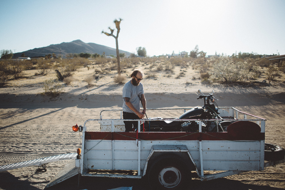 lex_mike_joshua_tree_photography_5735.jpg