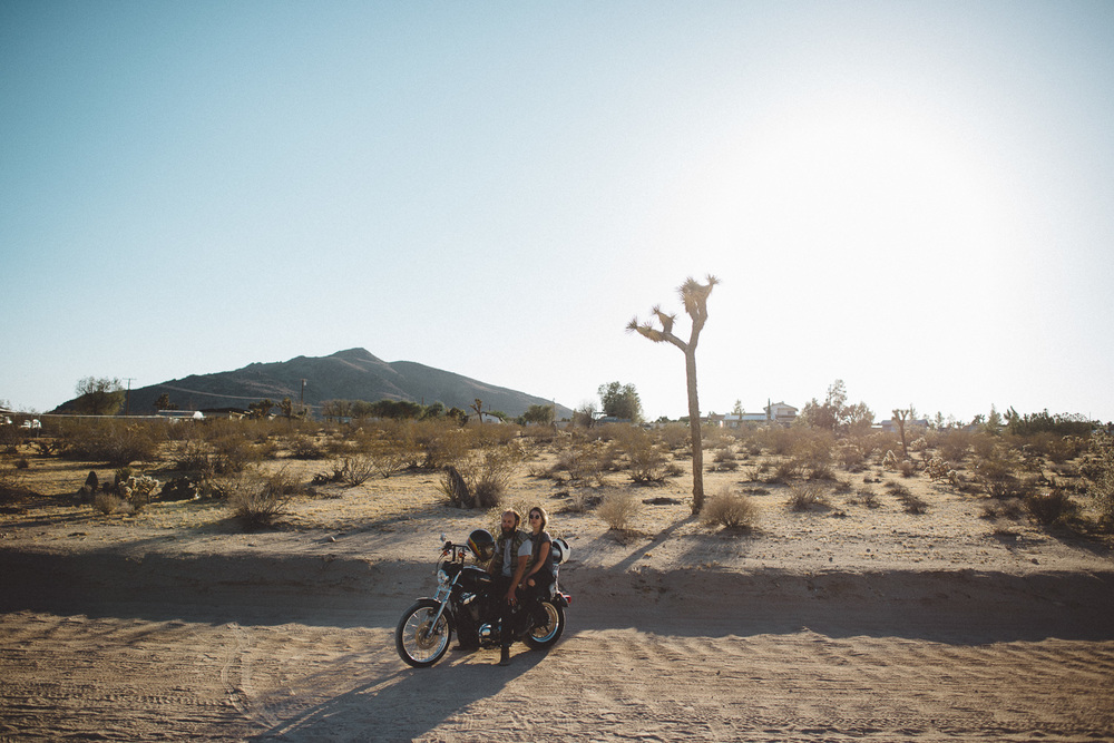 lex_mike_joshua_tree_photography_5822.jpg