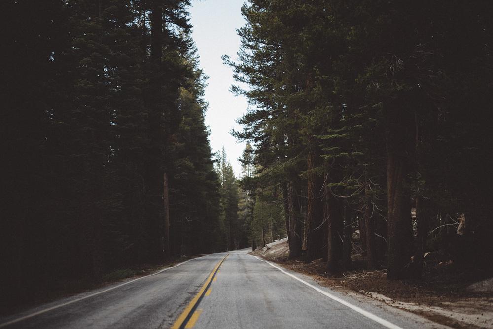 Inna_Alex_Yosemite_Elopement-3922.jpg