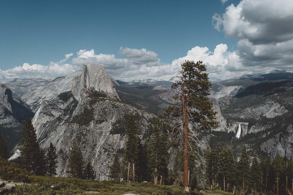 Inna_Alex_Yosemite_Elopement-3934.jpg