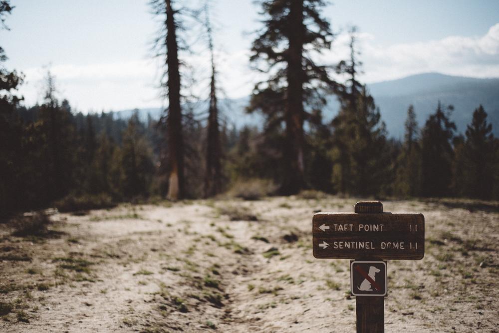 Inna_Alex_Yosemite_Elopement-4143.jpg