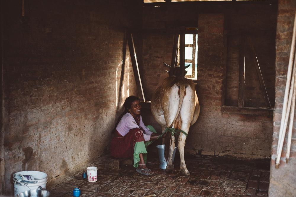 good-shepherd-agricultural-mission-2781.jpg