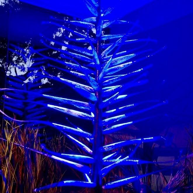 Polar Cypress Glass Tree - Noble Gallery, Brookgreen Gardens, 2017