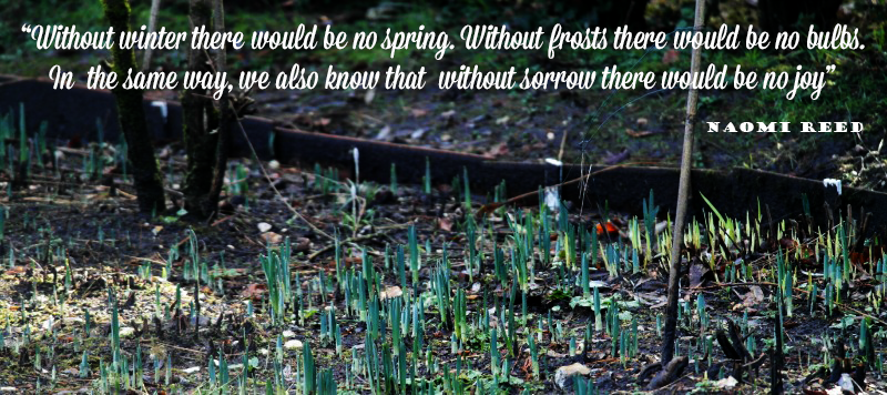 """""""Without winter there would be no spring. Without frosts there would be no bulbs. In the same way, we also know that without sorrow there would be no joy"""""""