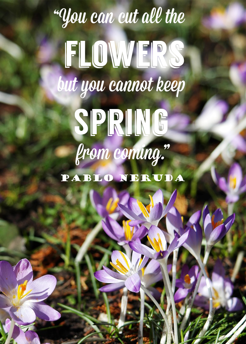 """You can cut all the flowers but you cannot keep Spring from coming."""
