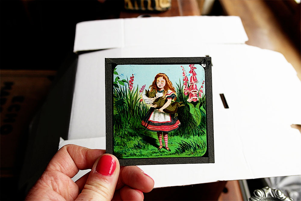 Alice in Wonderland vintage slides
