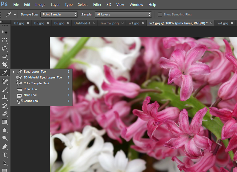 Adding a coordinating colour block to an image in Photoshop
