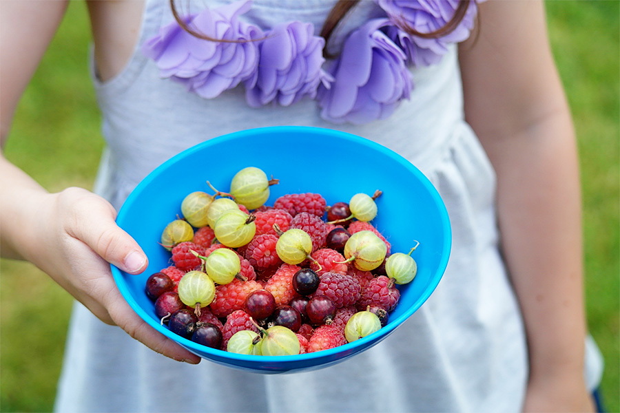 Girl holding bowl of berries