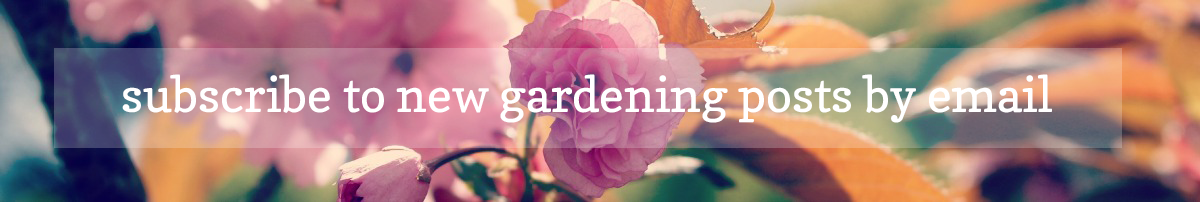 subscribe to new gardening posts by email