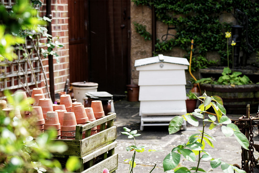 Beehive and plant pots
