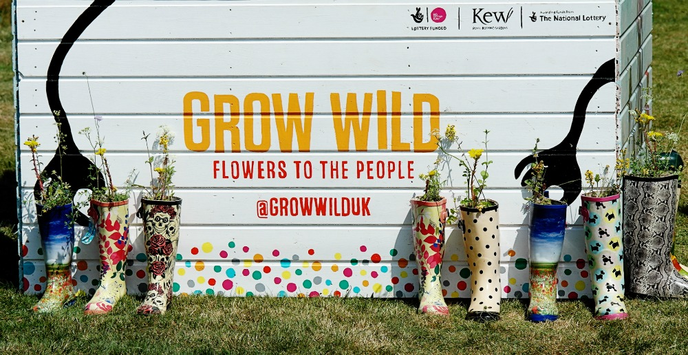 Grow Wild - Flowers to the People